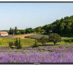 Телевизор STARWIND SW-LED43UA403 43″ (2020)